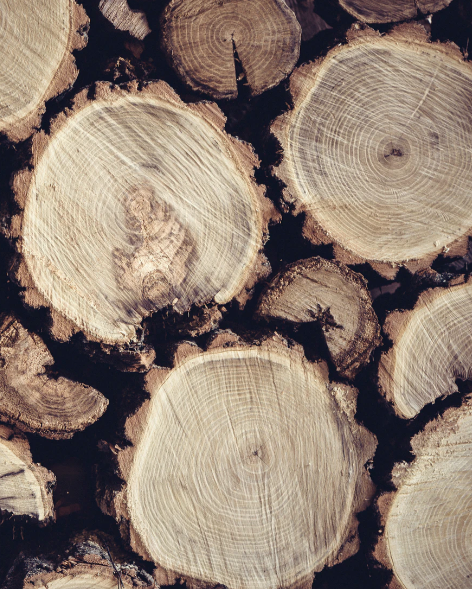 Sustainable Timber REIT